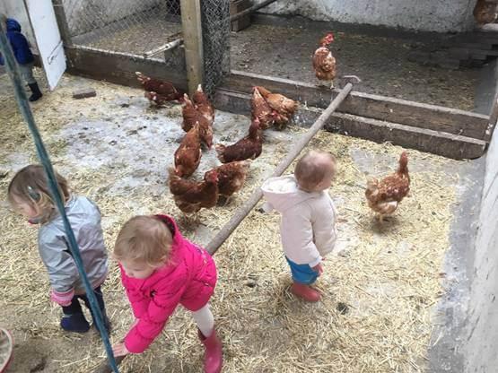 Kinderkade eitjes rapen